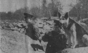 На снимке: слева на право — в дозоре рядовой Моисеев и младший сержант Иванов.  Фото С. Давыдова.